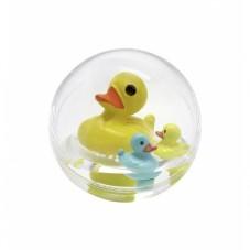 bulle d'eau canard