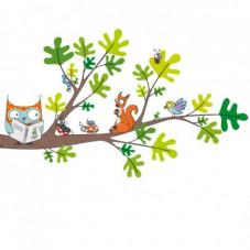 Hibou écureuil arbre nature